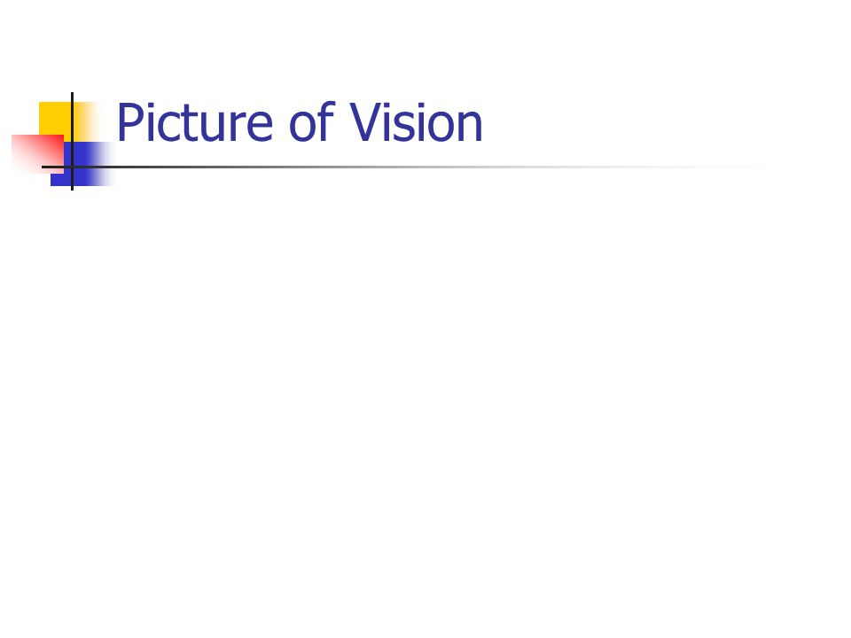 Picture of Vision