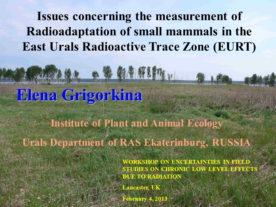 Issues concerning the measurement of Radioadaptation of small mammals in the East Urals Radioactive Trace Zone (EURT) Elena Grigorkina Institute of Plant and Animal Ecology Urals Department of RAS Ekaterinburg, RUSSIA WORKSHOP ON UNCERTAINTIES IN FIELD STUDIES ON CHRONIC LOW LEVEL EFFECTS DUE TO RADIATION Lancaster, UK February 4, 2013