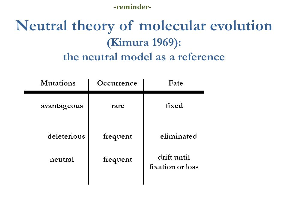 Neutral theory of molecular evolution (Kimura 1969): the neutral model as a reference Mutations Occurrence Fate avantageous rarefixed deleteriousfrequenteliminated neutralfrequent drift until fixation or loss -reminder-