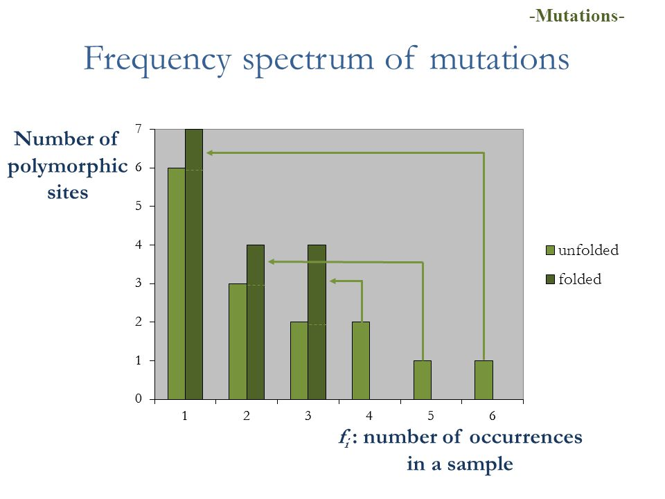 Frequency spectrum of mutations f i : number of occurrences in a sample Number of polymorphic sites -Mutations-