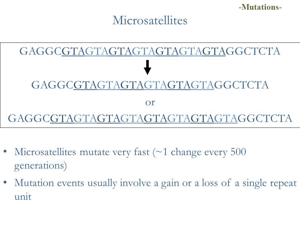 Microsatellites GAGGCGTAGTAGTAGTAGTAGTAGTAGGCTCTA GAGGCGTAGTAGTAGTAGTAGTAGGCTCTA or GAGGCGTAGTAGTAGTAGTAGTAGTAGTAGGCTCTA Microsatellites mutate very f