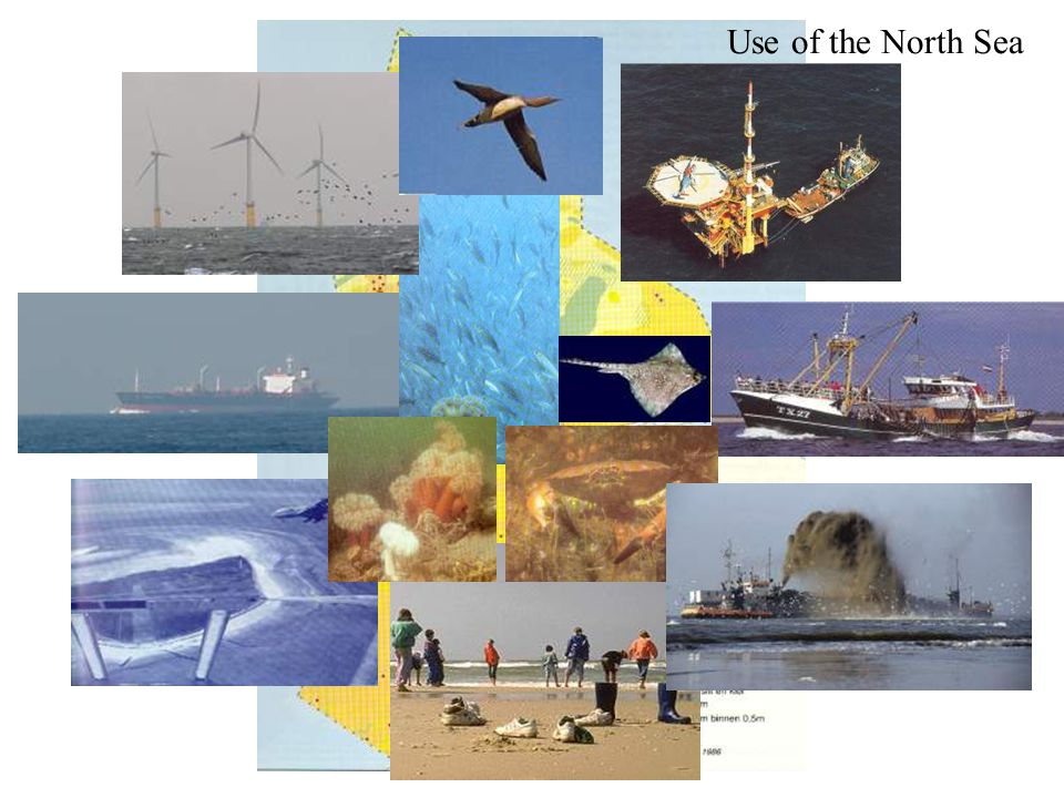 Use of the North Sea