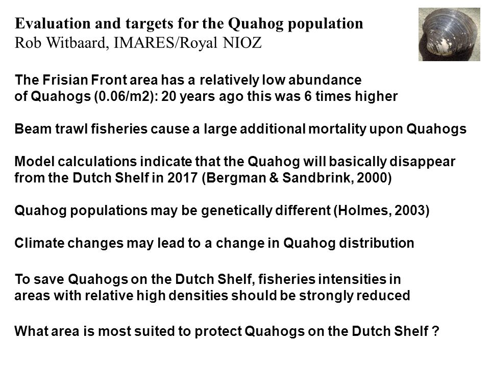 Evaluation and targets for the Quahog population Rob Witbaard, IMARES/Royal NIOZ The Frisian Front area has a relatively low abundance of Quahogs (0.0