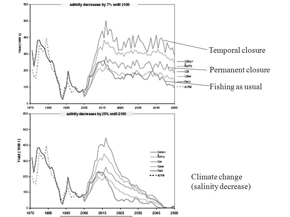 Fishing as usual Permanent closure Temporal closure Climate change (salinity decrease)