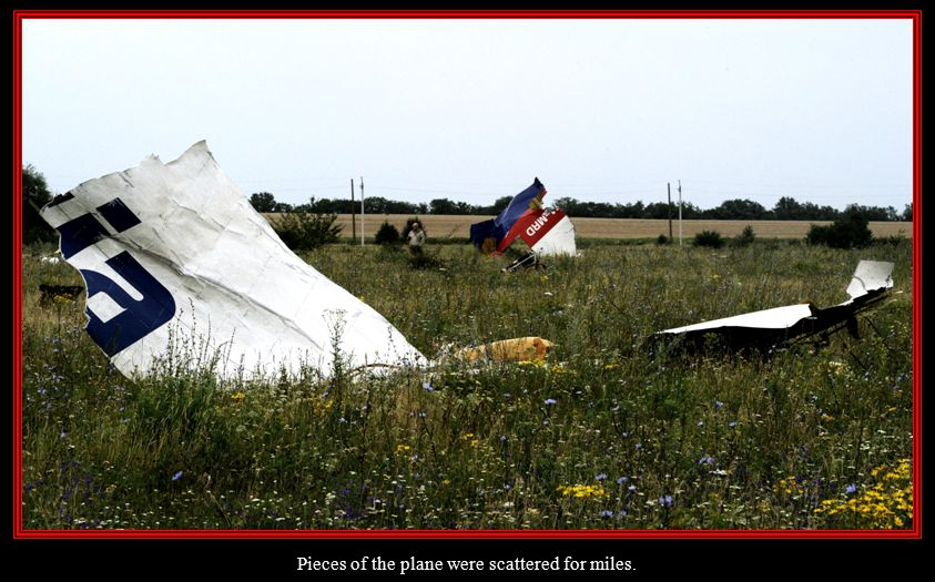 A pro-Russian separatist looks at wreckage from the nose section of a Malaysia Airlines Boeing 777 plane.