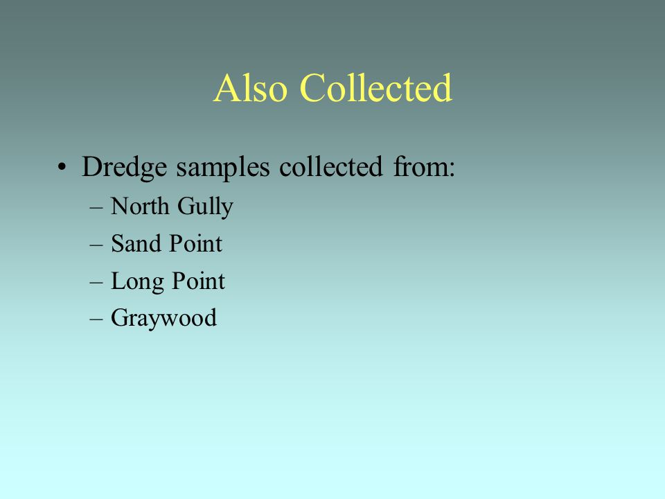 Also Collected Dredge samples collected from: –North Gully –Sand Point –Long Point –Graywood