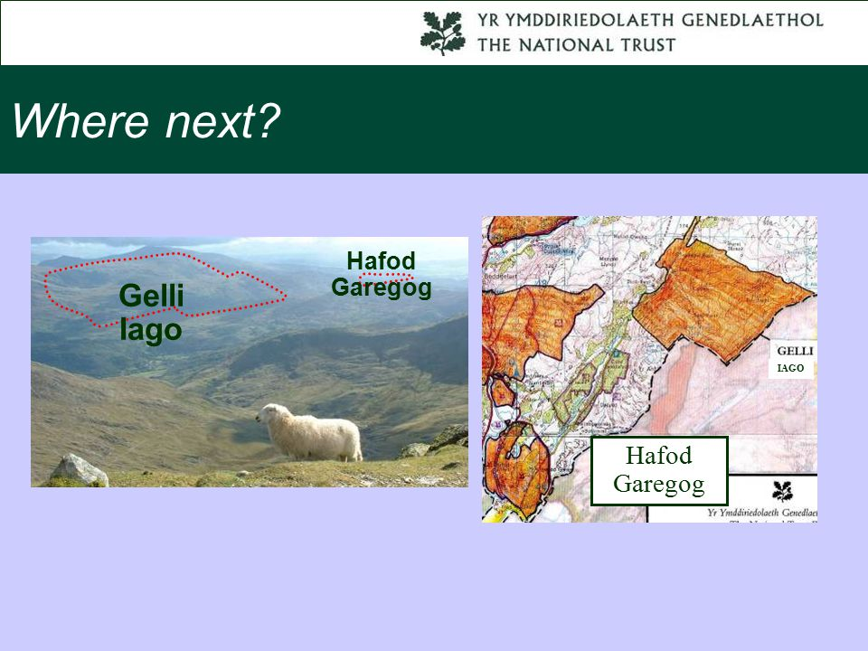 Where next Gelli Iago Hafod Garegog IAGO
