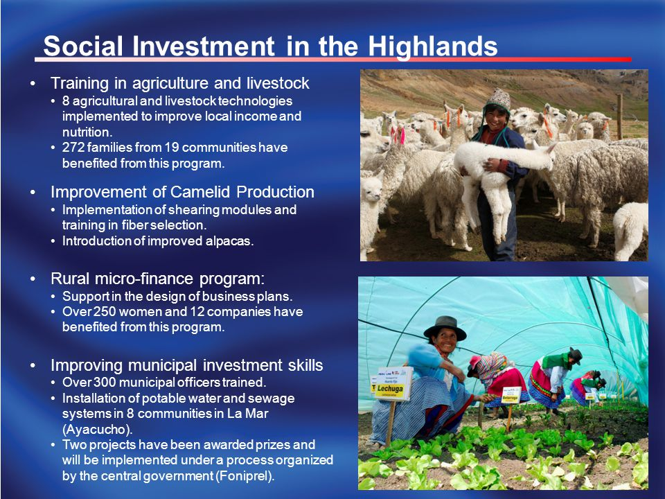 Social Investment in the Highlands Training in agriculture and livestock 8 agricultural and livestock technologies implemented to improve local income