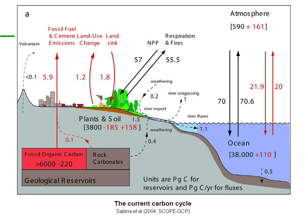 The current carbon cycle Sabine et al (2004, SCOPE-GCP)