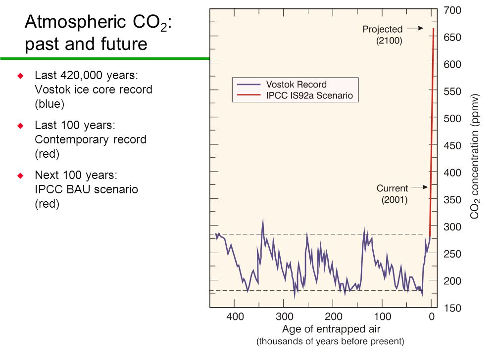 Atmospheric CO 2 : past and future u Last 420,000 years: Vostok ice core record (blue) u Last 100 years: Contemporary record (red) u Next 100 years: IPCC BAU scenario (red)