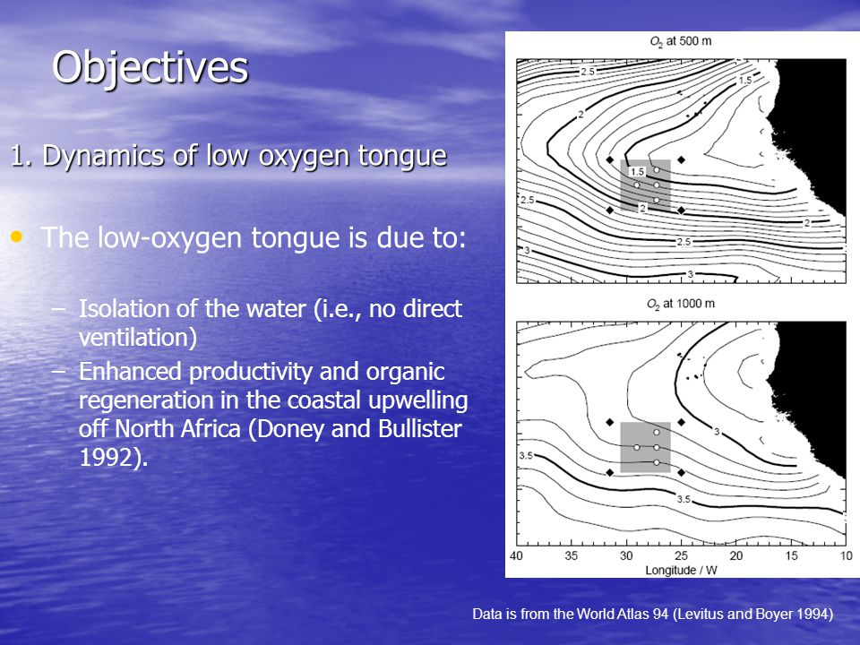 Summary The objectives of LIDEX are to address the dynamics of low oxygen tongue off northern Africa and to parameterize the messoscale eddy mixing for numerical modeling.