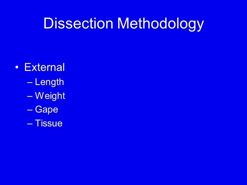 Dissection Methodology External –Length –Weight –Gape –Tissue