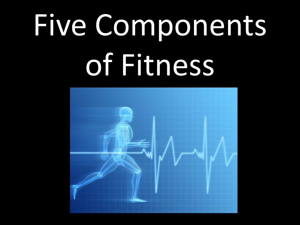 Five components of fitness Cardiorespiratory endurance Muscular endurance Muscular strength Flexibility Body composition