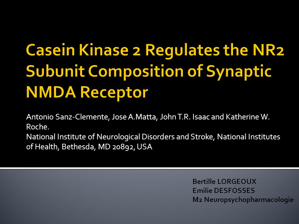 Antonio Sanz-Clemente, Jose A.Matta, John T.R. Isaac and Katherine W. Roche. National Institute of Neurological Disorders and Stroke, National Institu