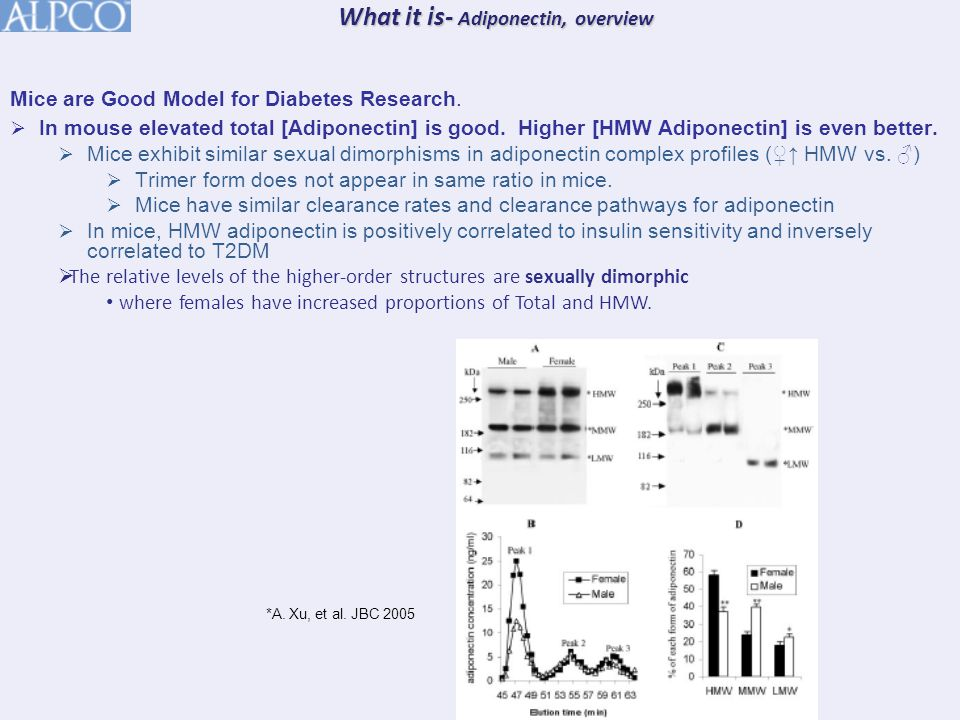 Mice are Good Model for Diabetes Research.  In mouse elevated total [Adiponectin] is good.