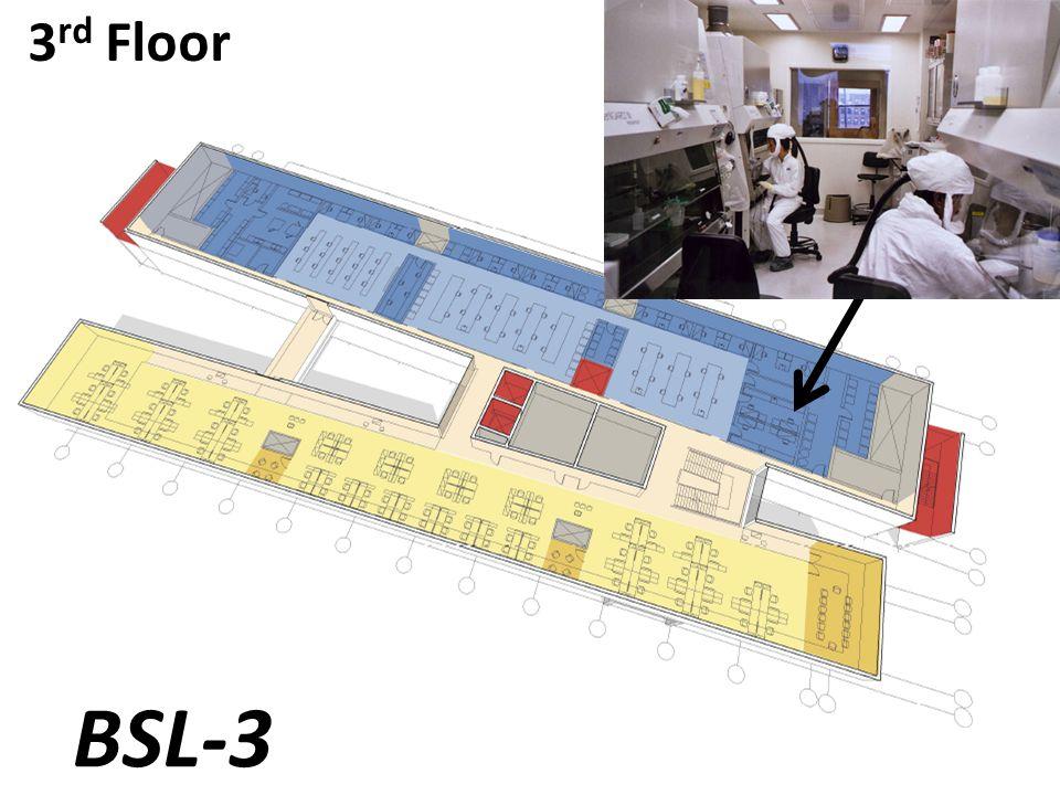 3 rd Floor BSL-3