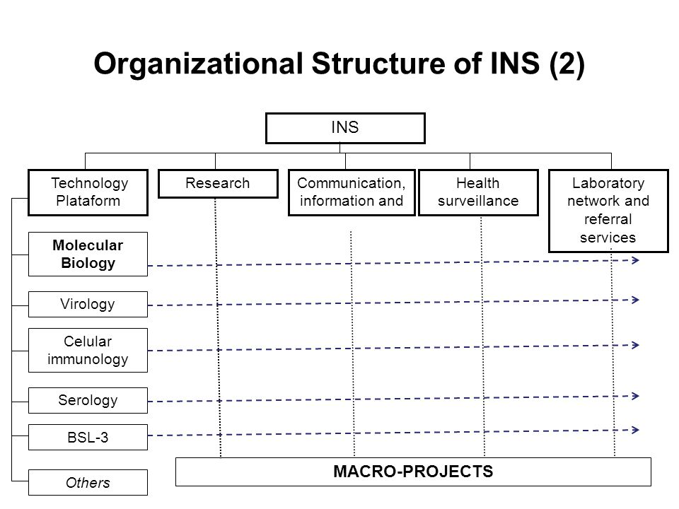 Organizational Structure of INS (2) INS Technology Plataform ResearchCommunication, information and Health surveillance Laboratory network and referral services MACRO-PROJECTS Molecular Biology Virology Celular immunology Serology Others BSL-3