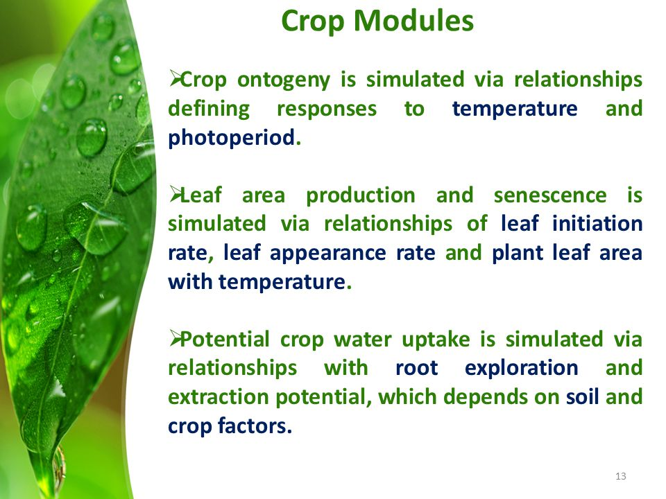 Crop Modules  Crop ontogeny is simulated via relationships defining responses to temperature and photoperiod.  Leaf area production and senescence i