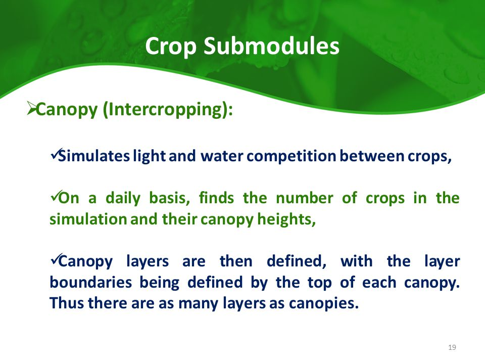 Crop Submodules  Canopy (Intercropping): Simulates light and water competition between crops, On a daily basis, finds the number of crops in the simu