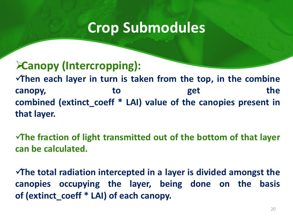 Crop Submodules  Canopy (Intercropping): Then each layer in turn is taken from the top, in the combine canopy, to get the combined (extinct_coeff * L