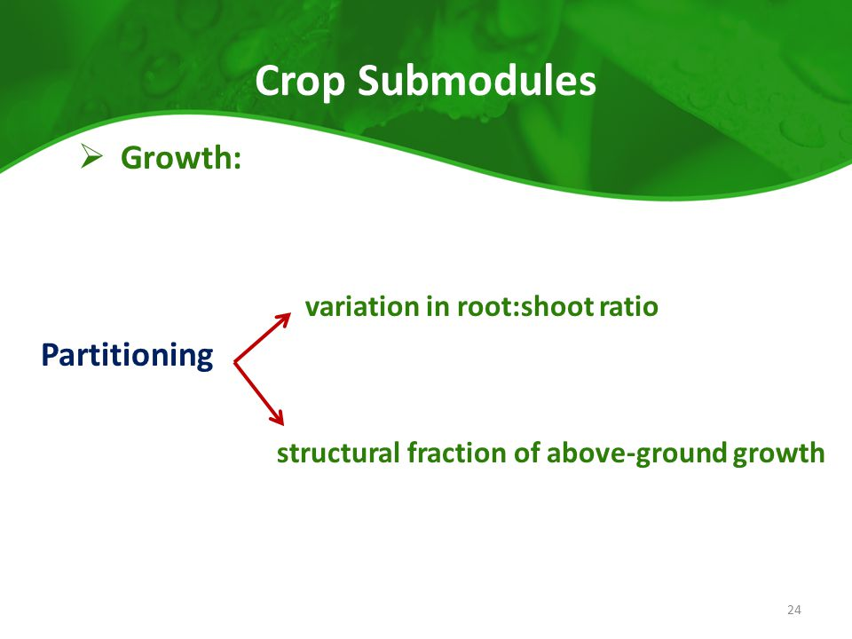 Crop Submodules  Growth: variation in root:shoot ratio Partitioning structural fraction of above-ground growth 24