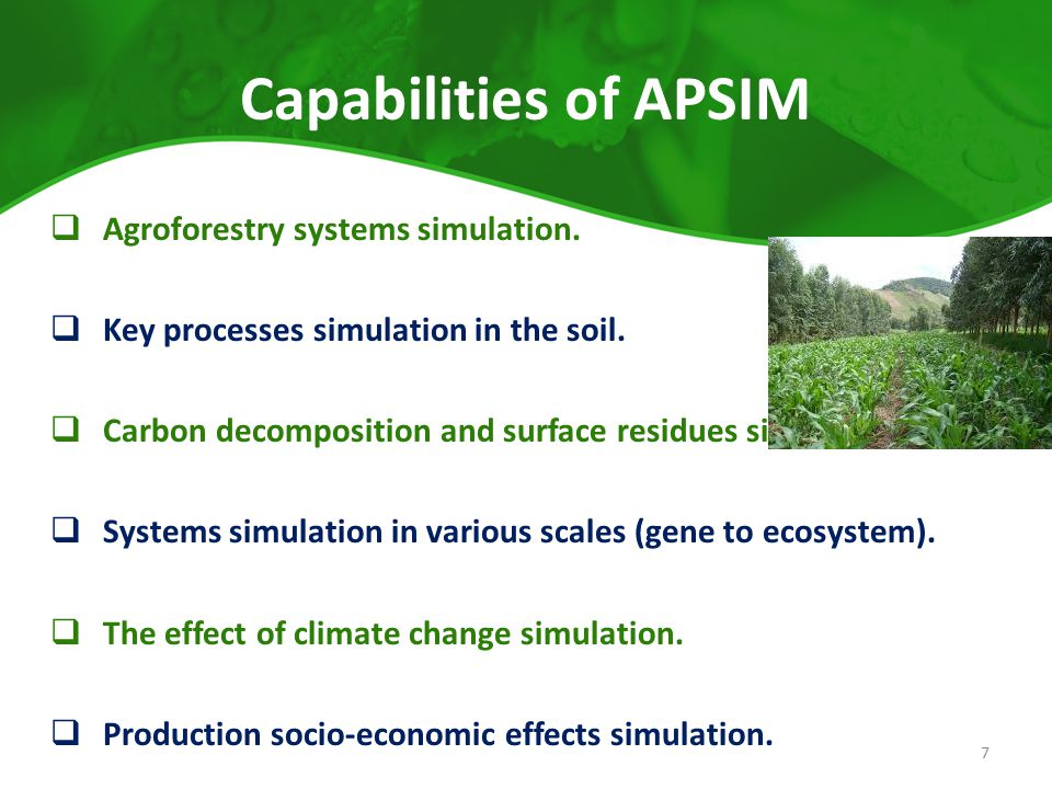 Capabilities of APSIM  Agroforestry systems simulation.  Key processes simulation in the soil.  Carbon decomposition and surface residues simultion