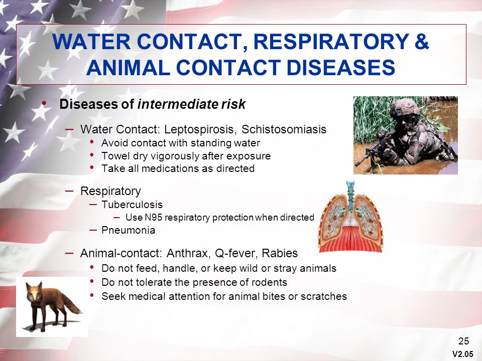 V2.05 25 WATER CONTACT, RESPIRATORY & ANIMAL CONTACT DISEASES Diseases of intermediate risk – Water Contact: Leptospirosis, Schistosomiasis Avoid cont