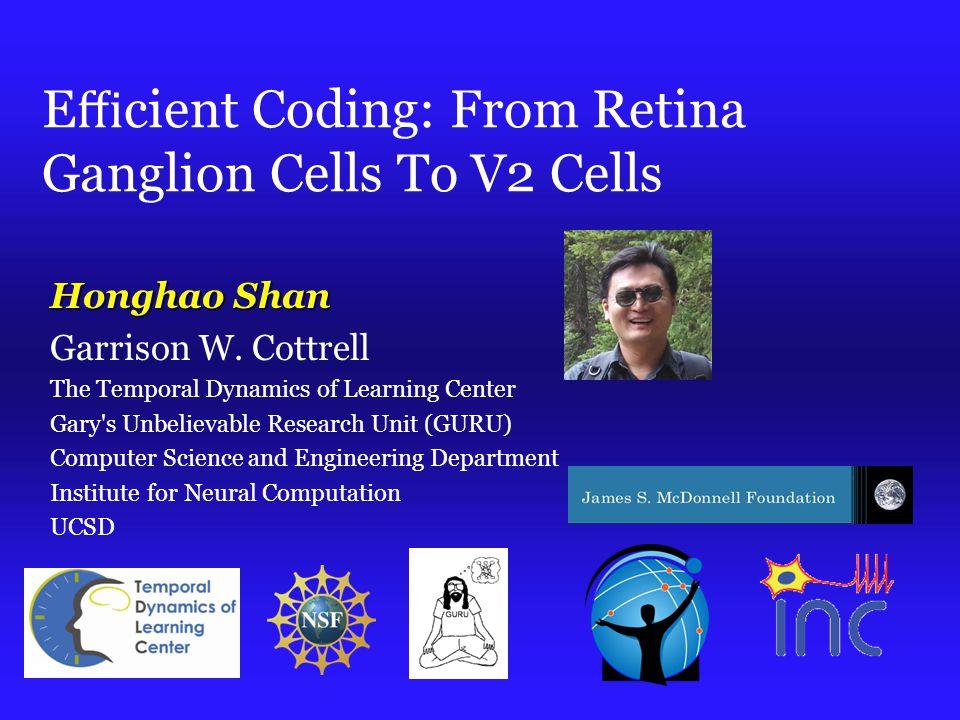 E ffi cient Coding: From Retina Ganglion Cells To V2 Cells Honghao Shan Garrison W.