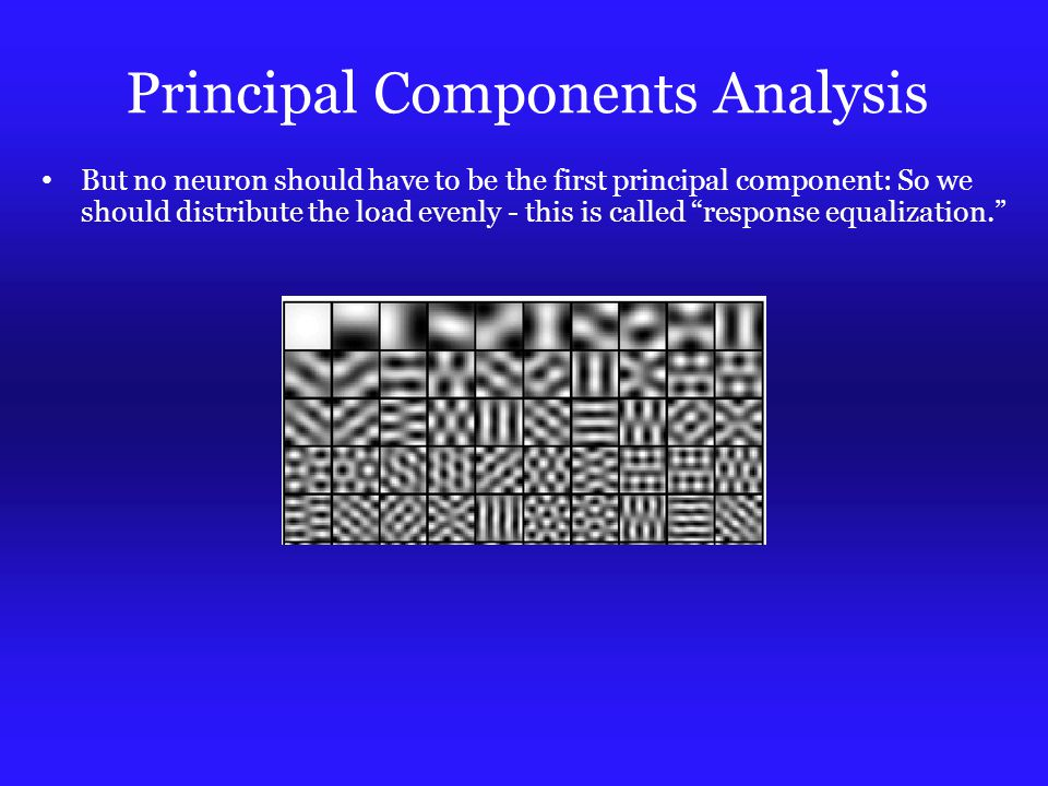 Principal Components Analysis But no neuron should have to be the first principal component: So we should distribute the load evenly - this is called response equalization.