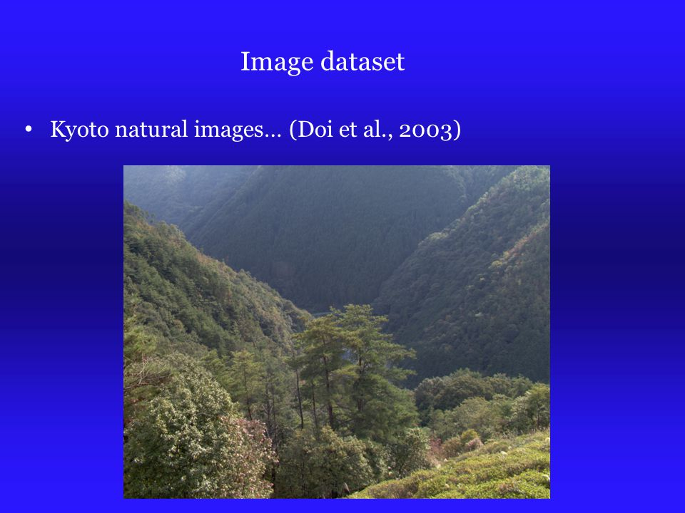 Image dataset Kyoto natural images… (Doi et al., 2003)