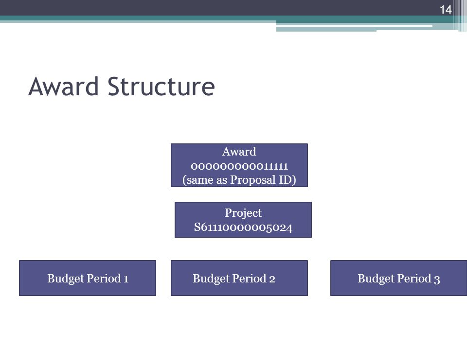 Award Structure 14 Award (same as Proposal ID) Project S Budget Period 1Budget Period 2Budget Period 3