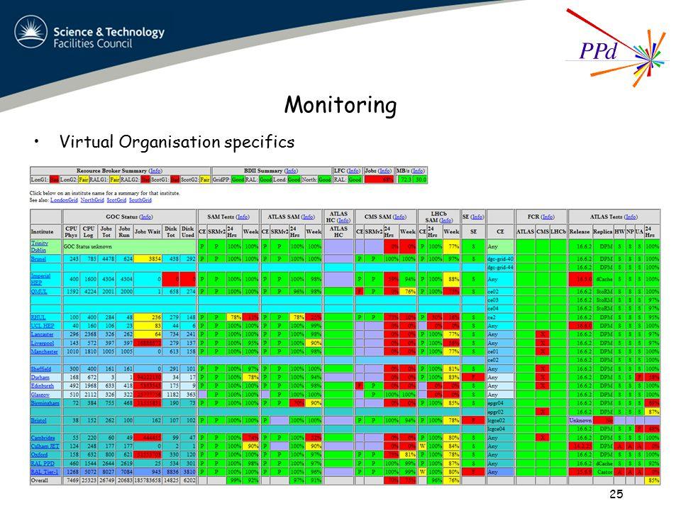 Monitoring Virtual Organisation specifics 25
