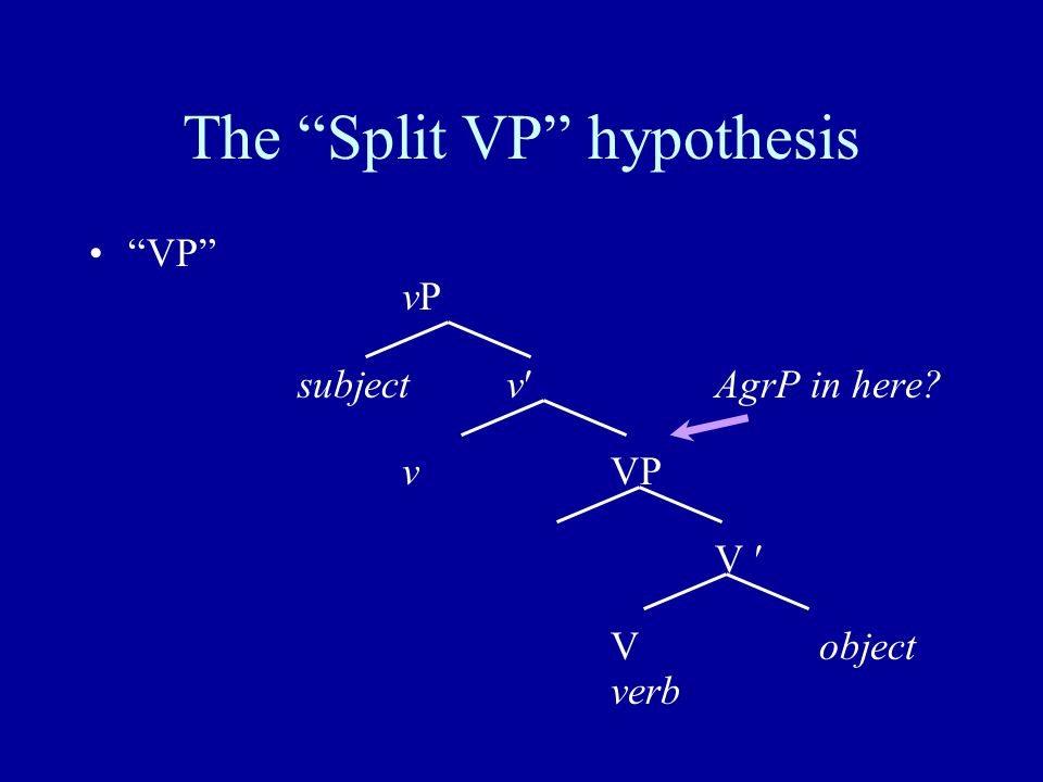 The Split VP hypothesis VP vP subjectvAgrP in here vVP V Vobject verb