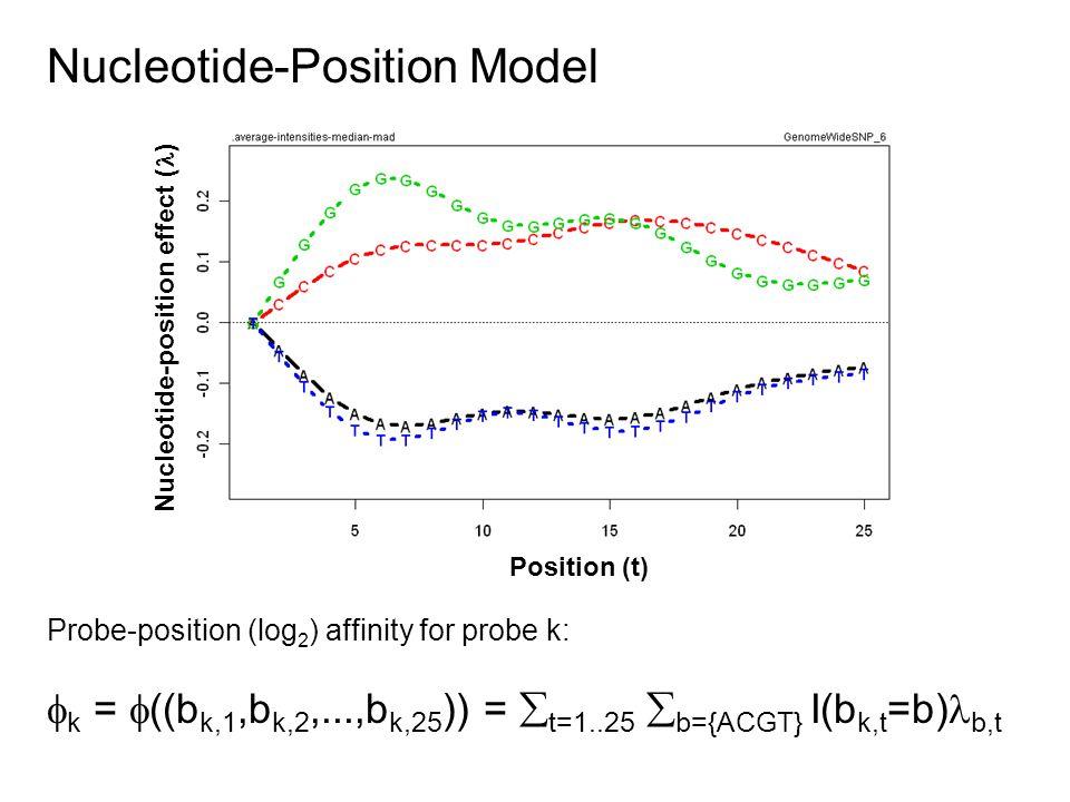 Nucleotide-Position Model Probe-position (log 2 ) affinity for probe k:  k =  ((b k,1,b k,2,...,b k,25 )) =  t=1..25  b={ACGT} I(b k,t =b) b,t Position (t) Nucleotide-position effect ( )