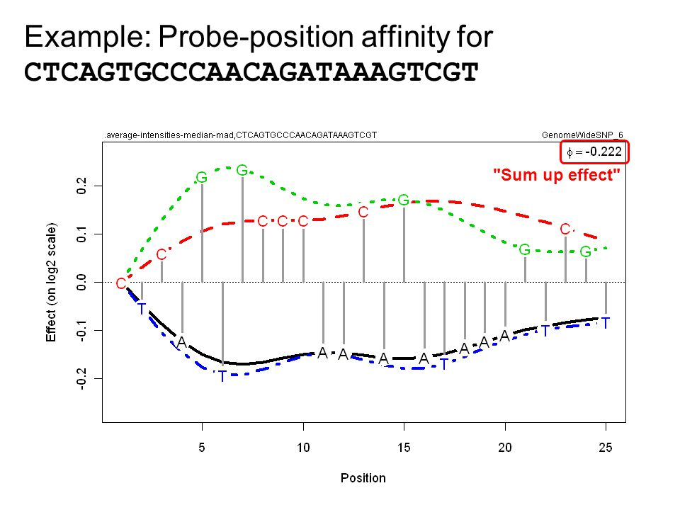 Example: Probe-position affinity for CTCAGTGCCCAACAGATAAAGTCGT Sum up effect
