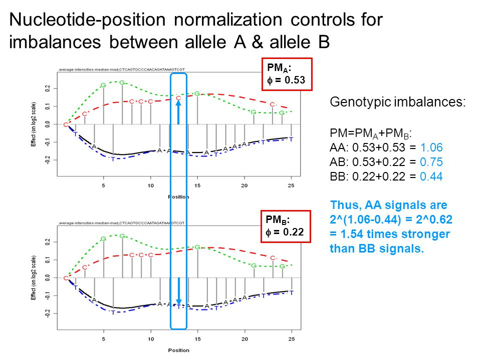 Nucleotide-position normalization controls for imbalances between allele A & allele B PM A :  = 0.53 PM B :  = 0.22 Genotypic imbalances: PM=PM A +PM B : AA: = 1.06 AB: = 0.75 BB: = 0.44 Thus, AA signals are 2^( ) = 2^0.62 = 1.54 times stronger than BB signals.
