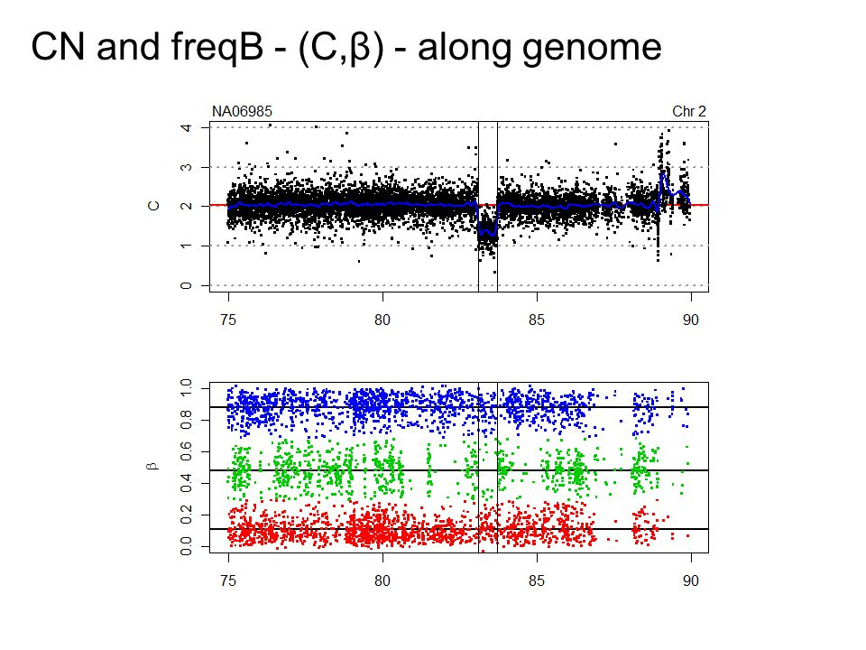 CN and freqB - (C,β) - along genome