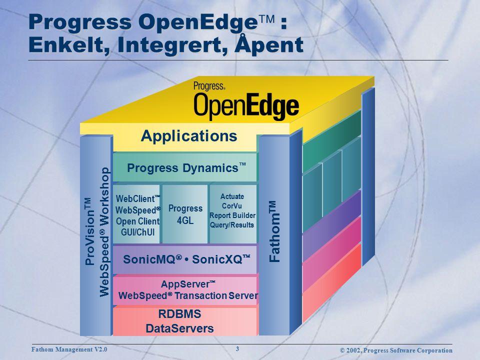 © 2002, Progress Software Corporation Fathom Management V2.0 24 Resource Status