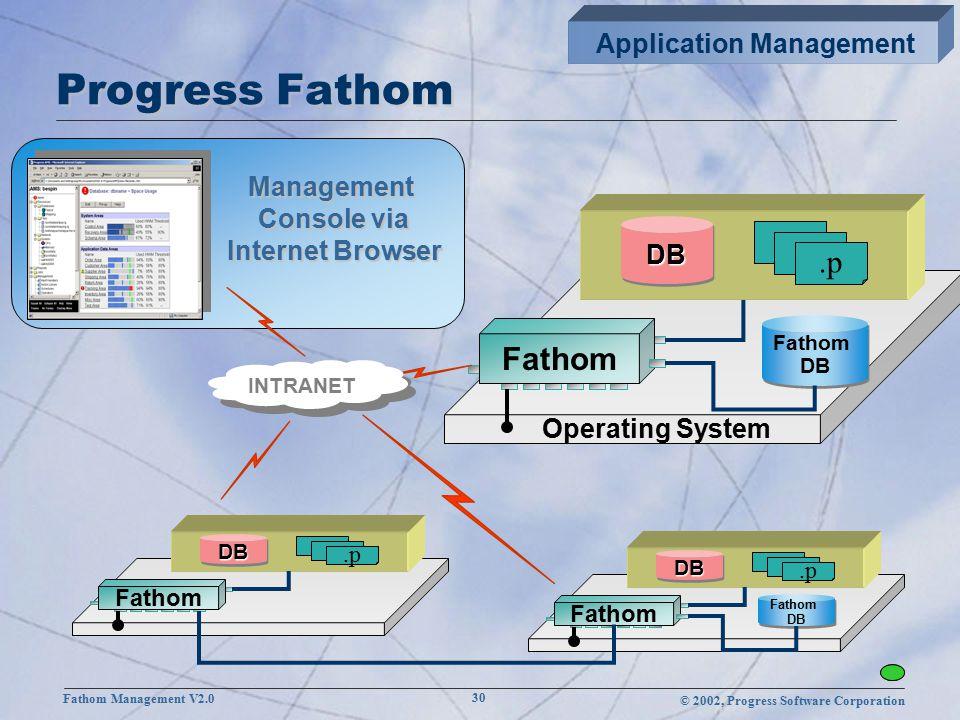 © 2002, Progress Software Corporation Fathom Management V2.0 30 Progress Fathom Management Console via Internet Browser Operating System Fathom DBDB.p Fathom DB Fathom DB Fathom DBDB.p Fathom DB Fathom DB Fathom DBDB.p INTRANET Application Management