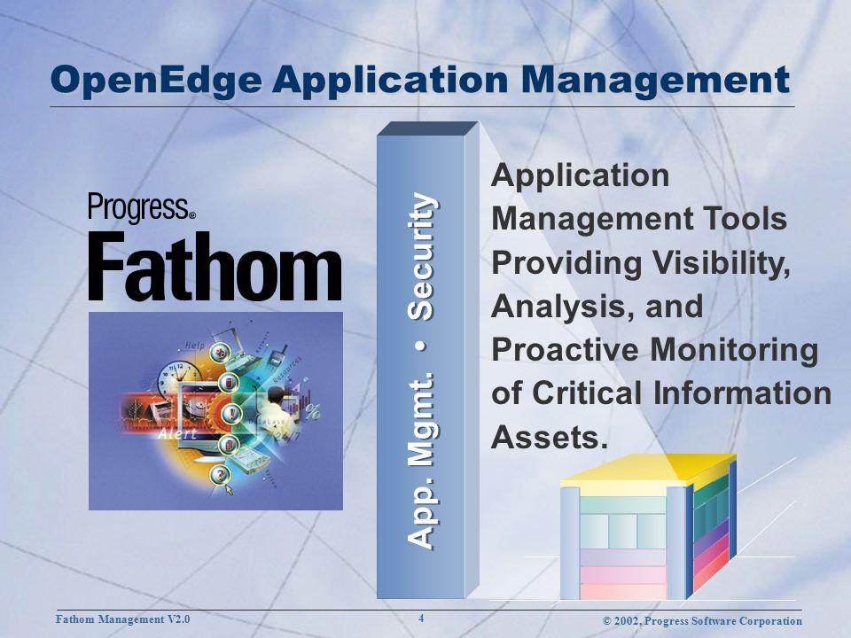 © 2002, Progress Software Corporation Fathom Management V2.0 15 Progress Fathom Management Console via Internet Browser Operating System Fathom DBDB.p Fathom DB Fathom DB INTRANET Application Management