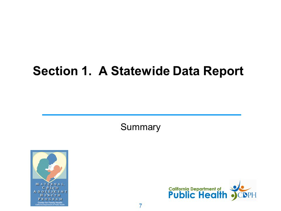 7 Section 1. A Statewide Data Report Summary