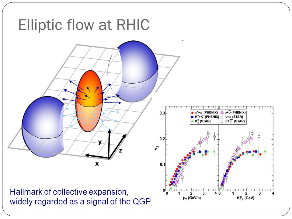 Elliptic flow at RHIC Hallmark of collective expansion, widely regarded as a signal of the QGP.