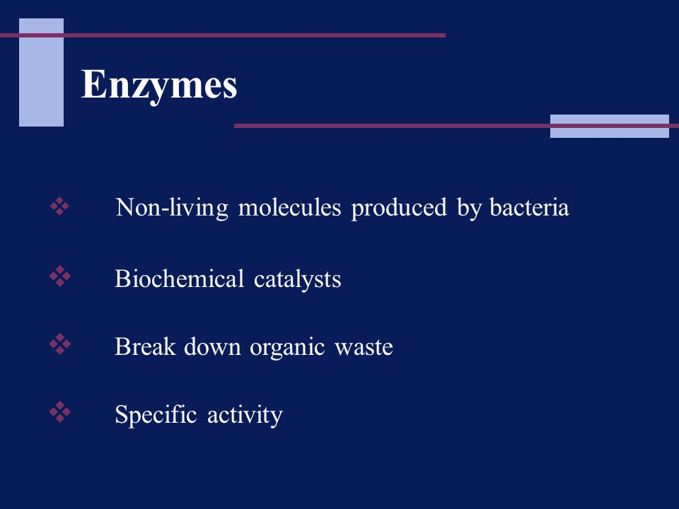 Enzymes  Non-living molecules produced by bacteria  Biochemical catalysts  Break down organic waste  Specific activity