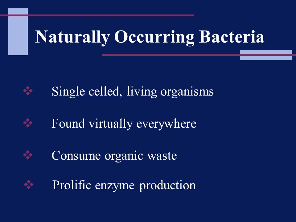 Naturally Occurring Bacteria  Single celled, living organisms  Consume organic waste  Found virtually everywhere  Prolific enzyme production