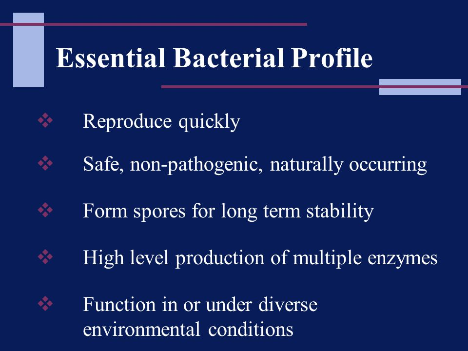 Essential Bacterial Profile  Reproduce quickly  Safe, non-pathogenic, naturally occurring  Form spores for long term stability  High level production of multiple enzymes  Function in or under diverse environmental conditions