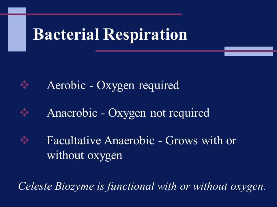 Bacterial Respiration  Aerobic - Oxygen required  Anaerobic - Oxygen not required  Facultative Anaerobic - Grows with or without oxygen Celeste Biozyme is functional with or without oxygen.