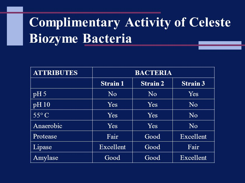 Complimentary Activity of Celeste Biozyme Bacteria ATTRIBUTESBACTERIA Strain 1Strain 2Strain 3 pH 5 No Yes pH 10 Yes No 55° C Yes No Anaerobic Yes No