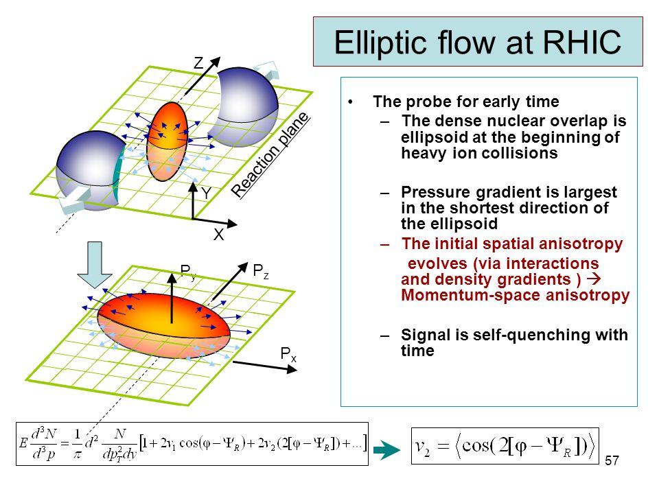 R. Lacey, SUNY Stony Brook 57 Elliptic flow at RHIC The probe for early time –The dense nuclear overlap is ellipsoid at the beginning of heavy ion col