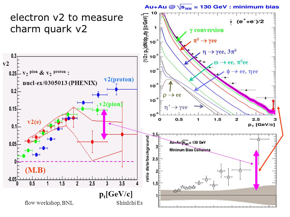 flow workshop, BNLShinIchi Esumi, Tsukuba17 v2(proton) v2(pion) v2(e) v 2 pion & v 2 proton : nucl-ex/0305013 (PHENIX) p t [GeV/c] v2 (M.B)  conversi