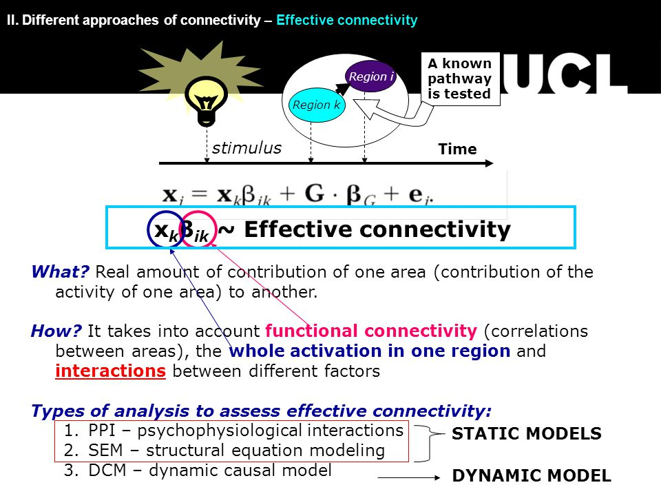 x k β ik ~ Effective connectivity What.